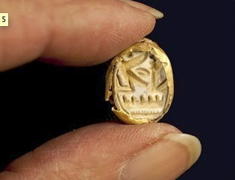 Egyptian scarab encased in gold. Photograph: Clara Amit, courtesy of the Israel Antiquities Authority.