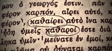 Lost In Translation: Pruned or Cleaned in John 15:2-3