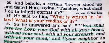 One of the Things I Love About The Bible