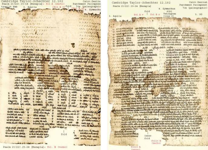 The Oldest existing manuscript of Origen's Hexapla, his parallel Bible.